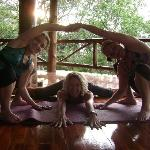 yoga students and instructor