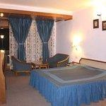 Photo of Hotel Krishna