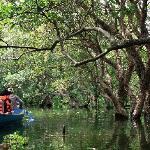 Floated forest by Angkor Gate Travel