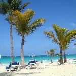 La plage du Riu Palace magnifique