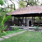 Photo de Bali au Naturel