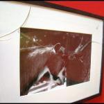 uno de los quadros rotos