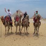 Enjoy your camel ride.