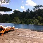alam ubud pool