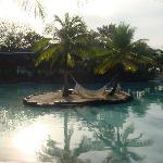 Lagoon hammock