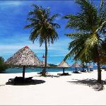 Badian Island Wellness Resort
