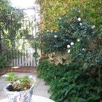 Courtyard off the Garden Room