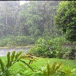 Tropical rain storm - view from our chalet