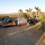 Campsite #83