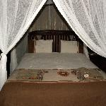 "The parent bedroom of ""Bush Willow"" tree house"