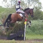 Eventing at Flowerhill