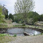円筒分水:水路の水を円形に7:3の比で分けている
