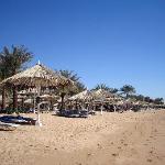 The Hilton's Private Beach