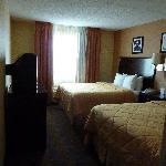 bedroom, 2 queens