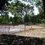 le terrain de tennis