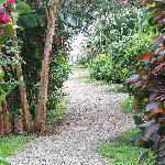 Path leading from the parking lot past the bungalows and restaurant...