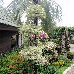 jardin boomerang village