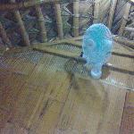 Fan in the kubo room