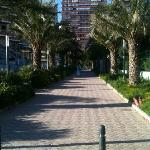 the walk from the beach to the hotel