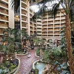 Embassy Suites Orlando Internatonal Drive - Atrium