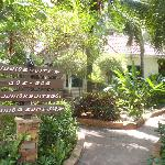Pink studios and junior suites are located in the tropical gardens