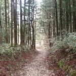 Section of Nakasendo way