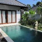 Ower own pool