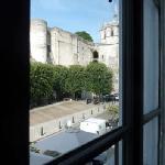 vue sur le château d'Amboise