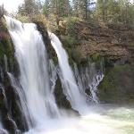 100 million gallons of water flow over McArthur-Burney Falls every day!
