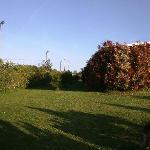 area verde comune monolocali
