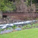 The McKenzie river/footbridge to gardens