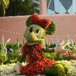 Minnie in Flowers