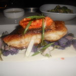Red Snapper over Cauliflower Puree