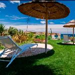 Tropical Garden overlooking the Sea