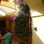 le patio où l'on prend le petit déj avec bougainvilliers magnifiques