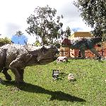The dinosaur replicas