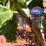 Photo of Hotel Iguazu Royal