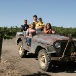 Vineyard Education options