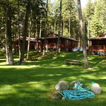 Resort cabin shared picnic area