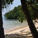 The hotels private beach.