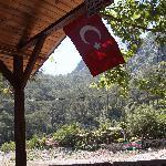 Foto de Saban Tree Houses