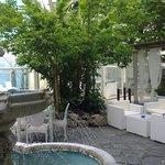 Piscina e giardino by day