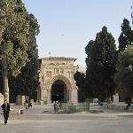Walking towards Masjid-ul-Aqsa
