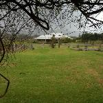 Hanging Tree homestead