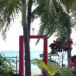 La jardin et la plage