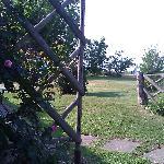 View Outside Garden Room