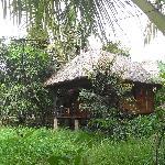 Mango bungalow