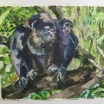 Sarah's watercolor of Hollar Monkeys