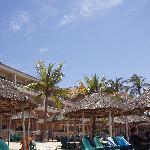 Palapas on the hotel beach.