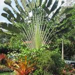 Amazing garden piece